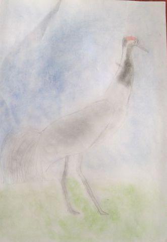 Żuraw - rysunek puchacza33